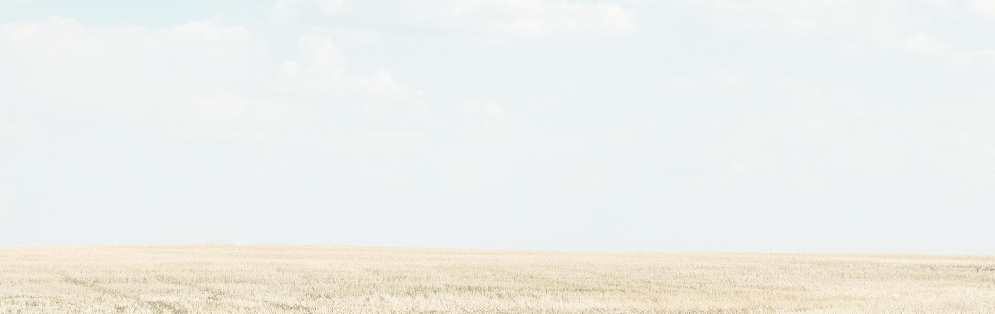 Farmland Management